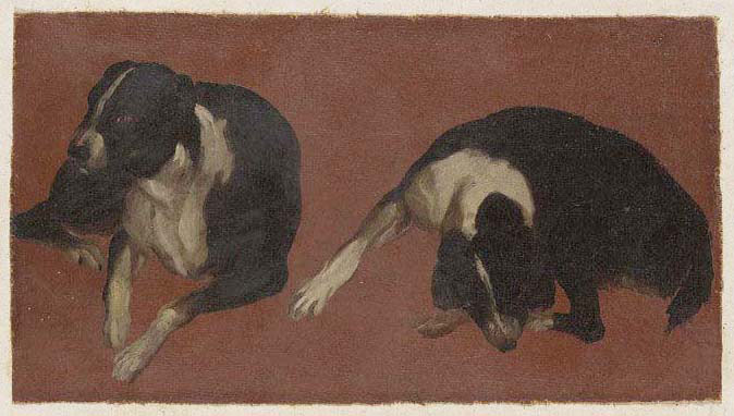 two studies of a dog