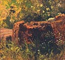 Still-life with a Rock